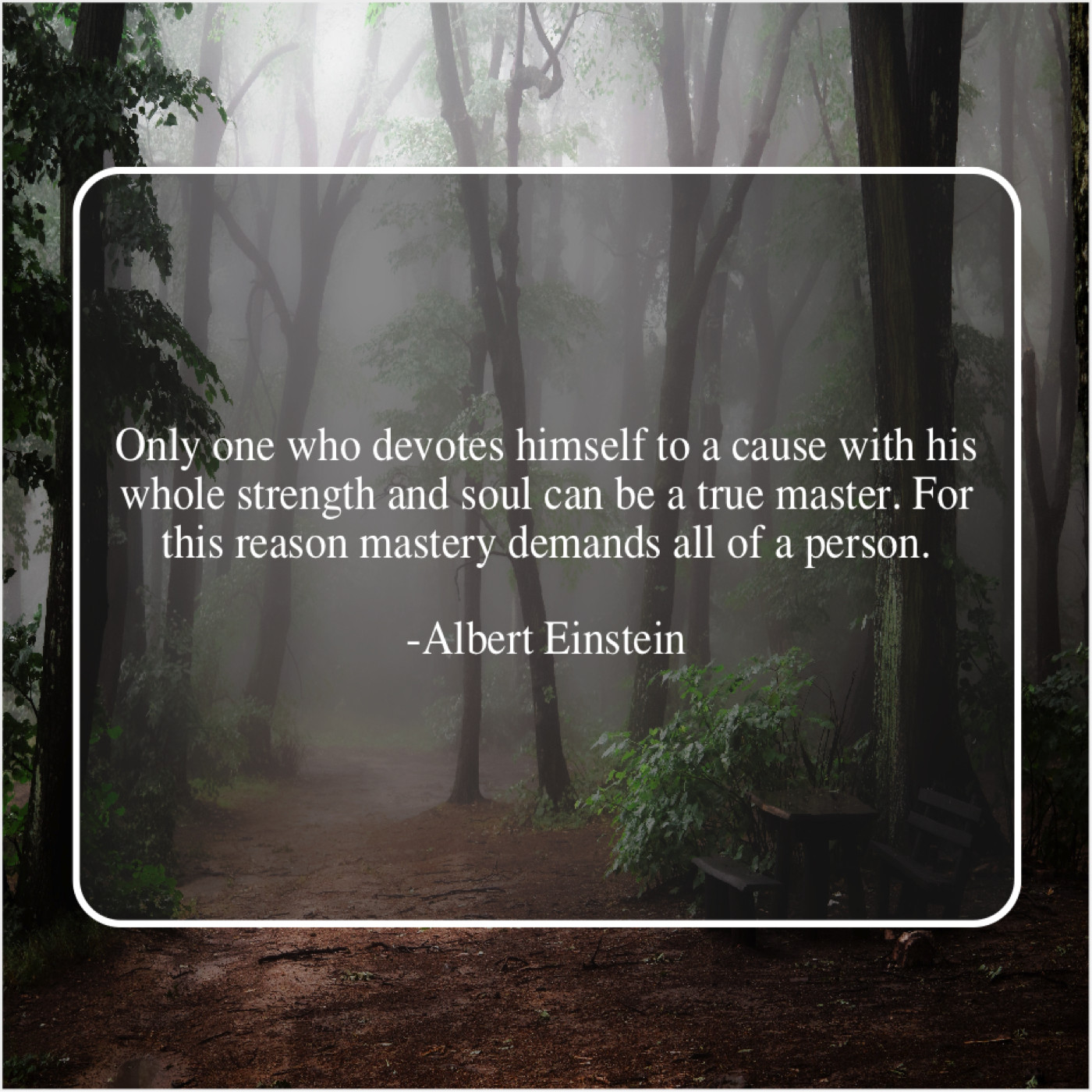 Albert Einstein Only One Who Devotes Himself Quote