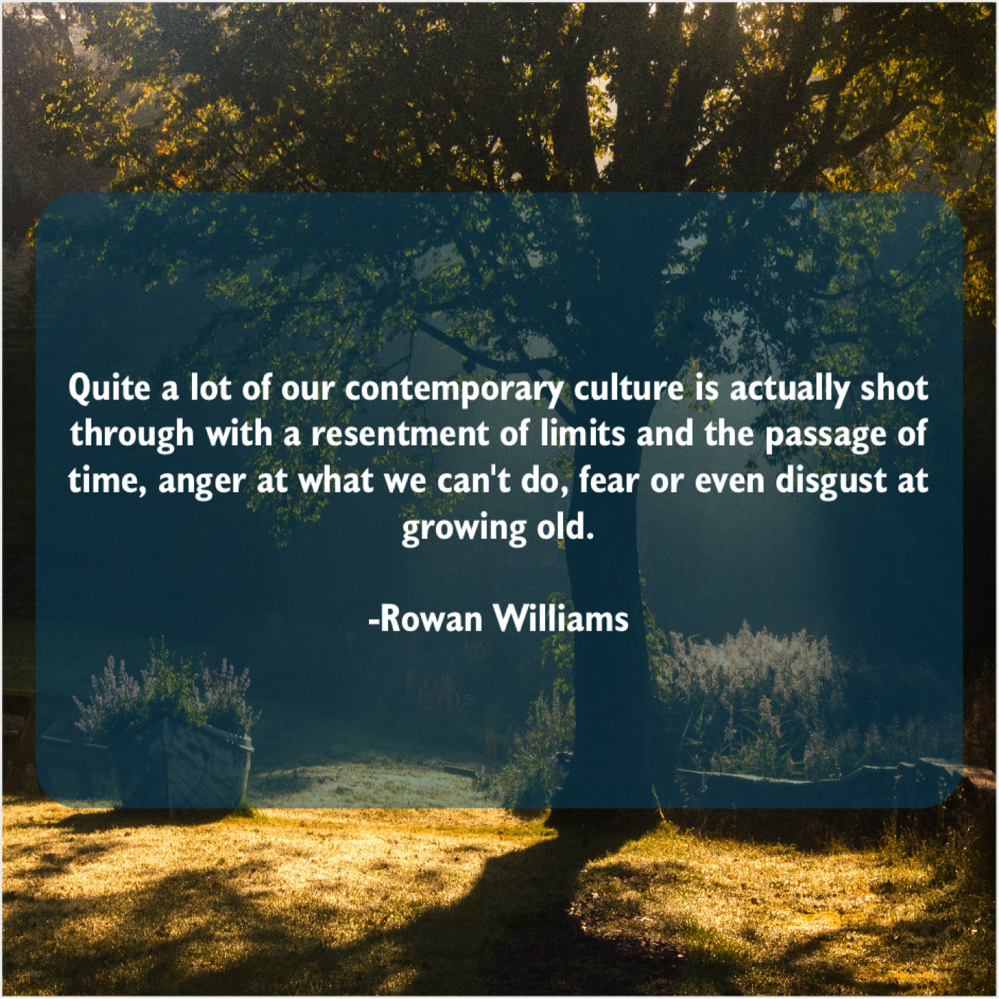 Rowan Williams Quite A Lot Of Our Quote Trumpet