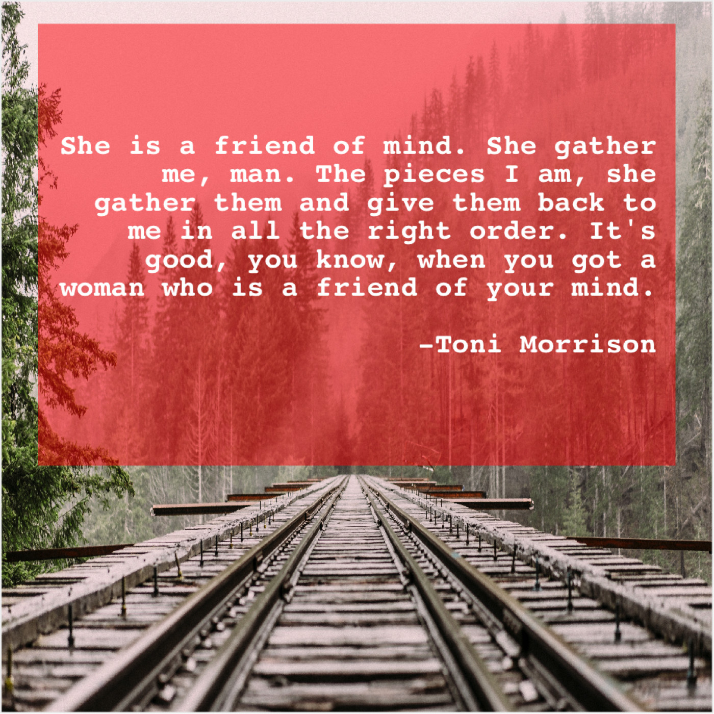 Toni Morrison She Is A Friend Of Quote Trumpet